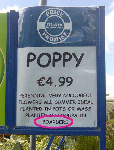 Boarders in the borders